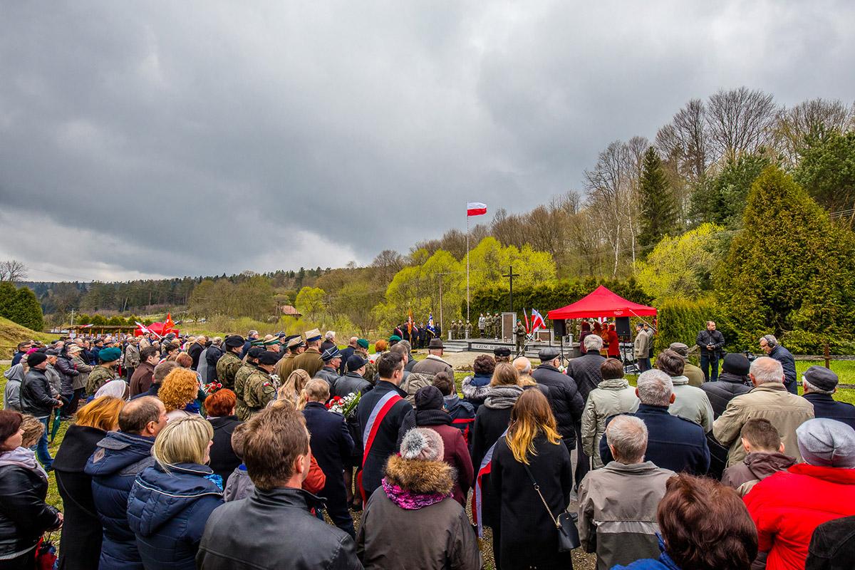 Borownica2017-4